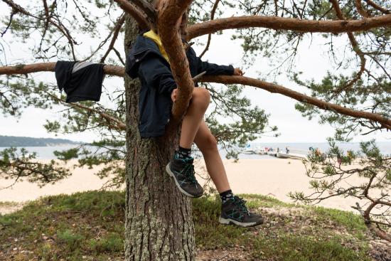 pikku-retkeilija-puussa-arjan-rantahiekkojen-vieressa_kuva-sini-salmirinnemetsahallitus.jpg