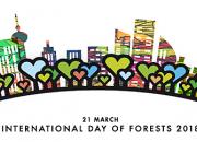 Dagis- och förskolebarn sår tallfrön för att fira den internationella skogsdagen