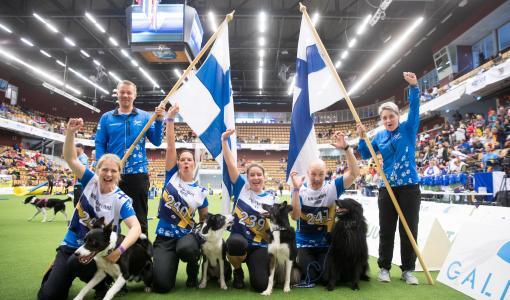 Suomen joukkueelle pronssia agilityn maailmanmestaruuskisoista