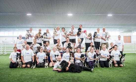 suomen-agilitymaajoukkue-2019.-kuva-jukka-patynen-koirakuvat.fi.jpg