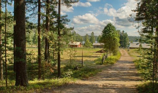 Rukiin riihipuintipäivä ja Koko perheen retkipäivä Korteniemen perinnetilalla Suomen luonnon päivänä 26.8.2017