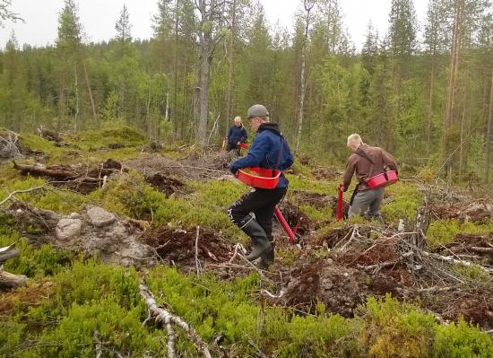 metsanistuttajat_kaisa-vainio.jpg