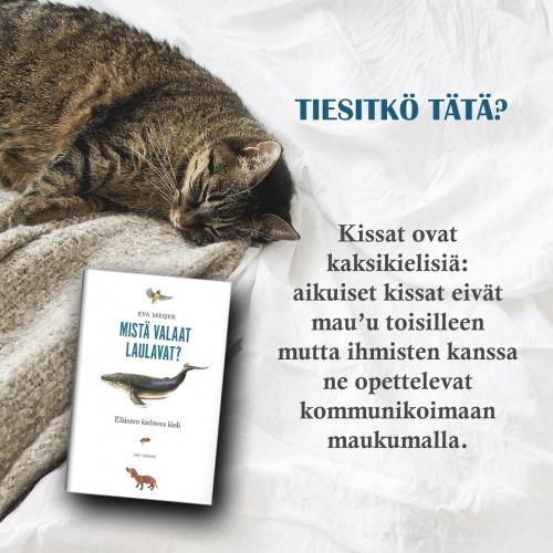 mista_valaat_laulavat_esimerkki.jpg