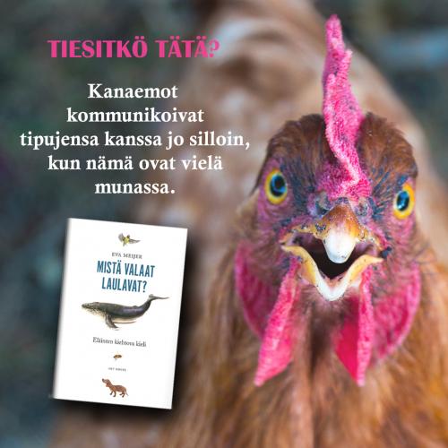 mista_valaat_laulavat_esimerkki3.jpg