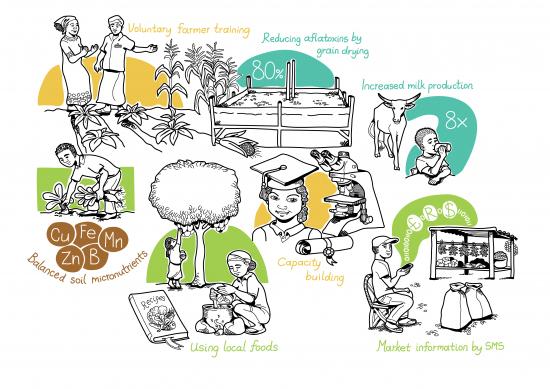 kuva-foodafrican-vaikuttavuus-lapi-ruokajarjestelman.png