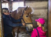 Terapia, kuntoutus, kasvatus, harrastustoiminta – tuore julkaisu jäsentää hevosavusteisten palveluiden kenttää