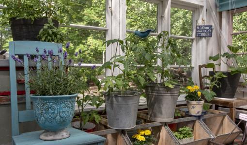 Kutsu yleisö kylään vanhaan taloosi tai puutarhaasi