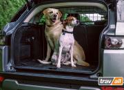 Koiraverkon avulla koirasi matkustaa turvallisesti autossa