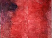 Taidemaalari Marika Mäkelän kuratoima kesänäyttely tuo naistaiteilijat yhteen eri vuosikymmeniltä