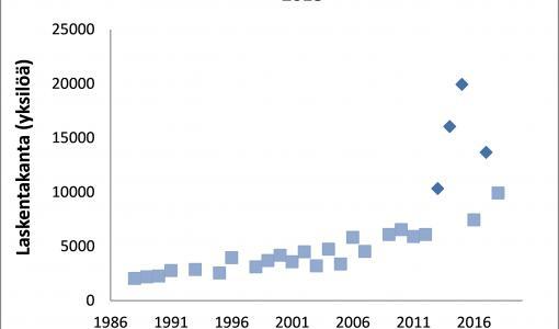 Etelässä norppalaskennat onnistuivat hyvän jäätalven ansiosta – Perämerellä tuloksissa vaihtelua viime vuosina