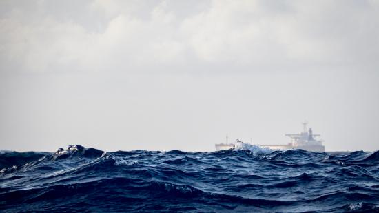 seaforvalue.jpg