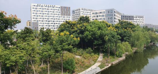 pikkulin-kiinan-toimisto-lahella-jokea.jpg