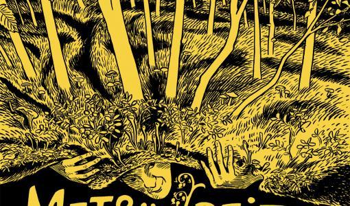 Palkittu Metsänpeitto-sarjakuvateos julkaistaan Venäjällä