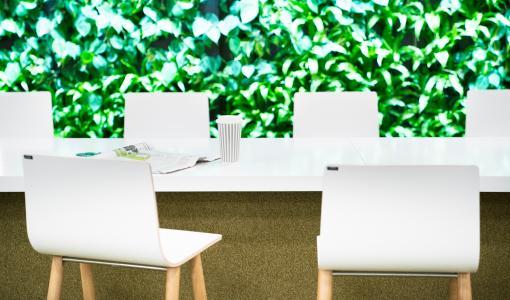 Isku ja Naava yhteistyöhön: teemme koulujen ja toimistojen sisätiloista luonnonmukaisempia