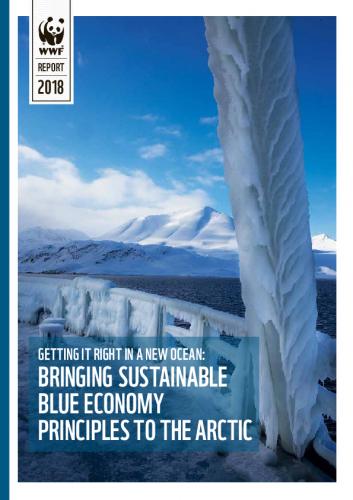 getting-it-right-it-a-new-ocean-raportti.pdf