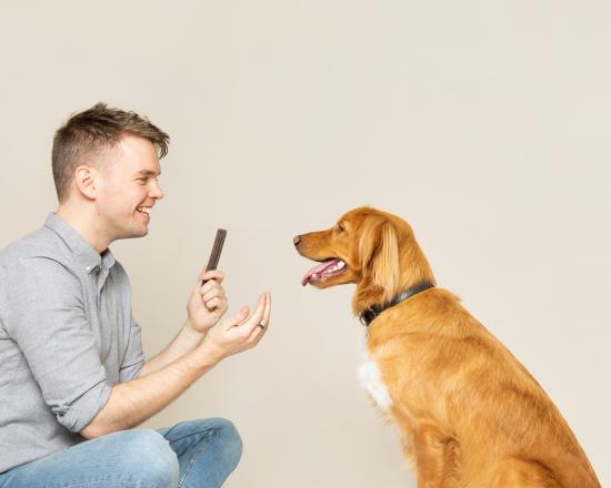 ec_dog_dental_01.jpg