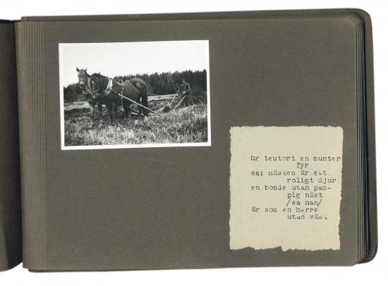utdrag-ur-elmer-diktonius-album-birgittas-bilderbok-knappt-och-knapad-av-farbr.-d..jpg