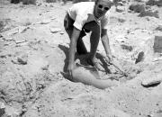 Göran Schildts soldränkta fotografier vittnar om äventyr och kända medresenärer