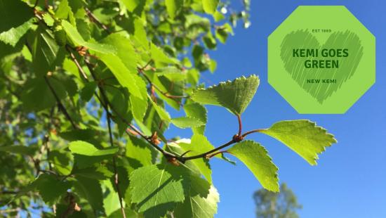 kemi-goes-green.jpg