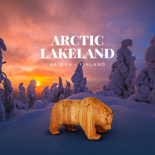 terho-bear-kainuu-arctic-lakeland.jpg