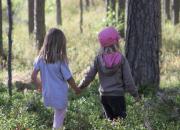 Suomen Ladun ja Syklin hanke vie varhaiskasvattajat metsään