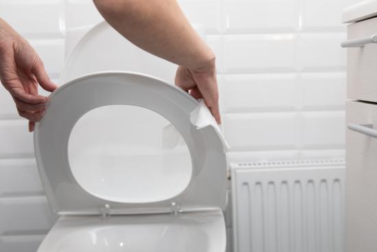 wc_puhdistaminen_hygienisesti.jpg