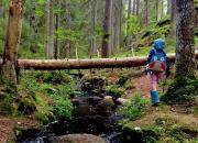 Suomen luonnonsuojeluliiton Uudenmaan piiri haluaa kunnat kestävälle polulle