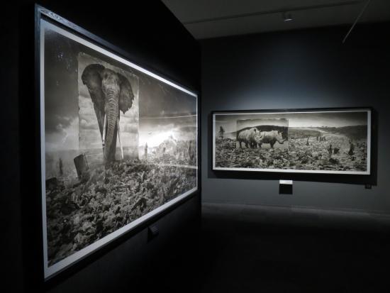 inherit-the-dust-kansallismuseolla_kuva-soile-pietila_museovirasto.jpg