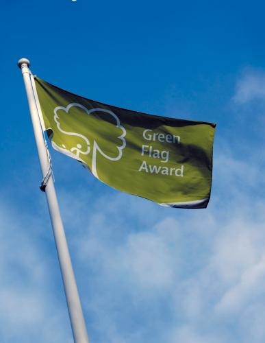 green-flag.jpg