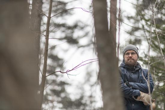 teemu-vesterinen_forest.jpg