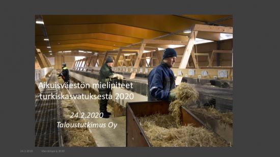 kyselytulokset_turkiselinkeino_taloustutkimus-20200224.pdf