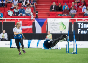 Agilityn joukkueiden maailmanmestaruudet ratkottu Turussa – ennakkosuosikit jakoivat palkintosijat
