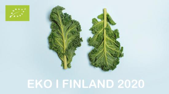 eko-i-finland-2020.pdf