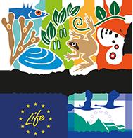 Rannikko-LIFE-hanketta vetää Metsähallitus.