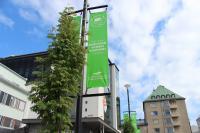 green-leaf-marian-aukio-greenreality.jpg