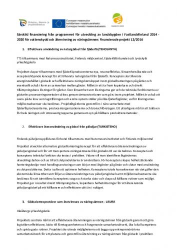 en-sammanfattning-av-alla-projekt-som-beviljats-finansiering.pdf