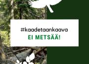 Luonto-Liiton Kaadetaan kaava -kampanjassa puolustetaan Helsingin lähimetsiä