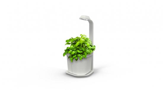 genie-complete-herb-white.jpeg