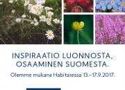Tutkimus: Suomalaisten mielestä muotoilua ei hyödynnetä tarpeeksi eri toimialoilla