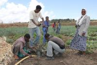etiopia_vetta-pelloille-jalkapumpulla_hanke-dessiessa_sari-lehtela.jpg