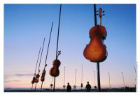 helsinki-festival_harmonic-fields_credits_vincentlucas.jpg