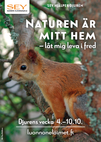 lasten_juliste_2017_pa_svenska.png