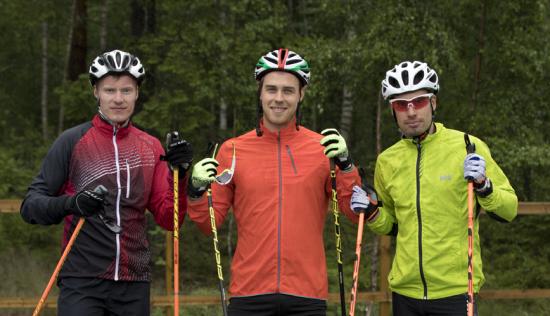 villeahonen_vesakallio_larilehtonen.png
