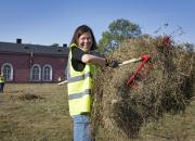 Vapaaehtoiset säilyttävät maailmanperintöä Suomenlinnassa