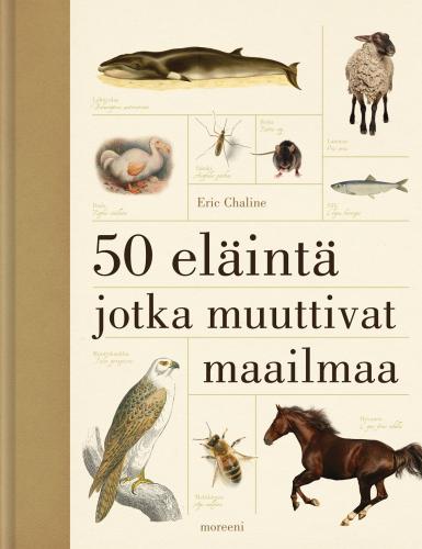 50_elainta_paino.jpg