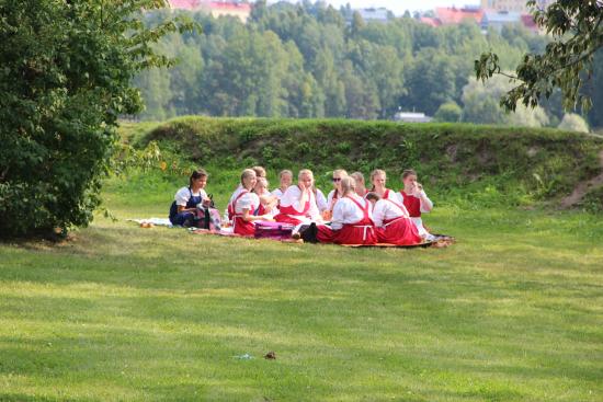esiintyjaryhma-piknikilla-linnoituksen-valleilla-_-vanhankaupungin-paivat-2015-_-kuva-lappeenrannan-kaupunki.jpg