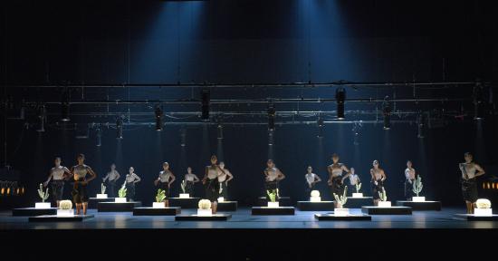 cacti-kuva-dortmundin-baletin-arkisto.jpg