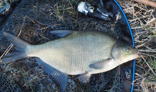 Onginta on kalastusmuodoista monipuolisin