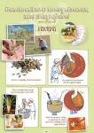 anis-de-flavigny-valmistus-sarjakuvana_englanniksi.pdf