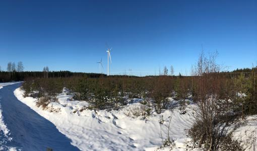 CPC Finland Wins the Bid for Lakiakangas 3 Wind Farm in Finland's First Technology Neutral Renewable Energy Tender
